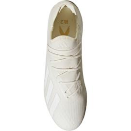 Adidas X 18.2 Fg M DB2181 futballcipő fehér fehér 2