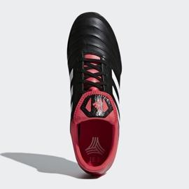Adidas Copa Tango 18.3 Tf M CP9022 futballcipő fekete fekete 2